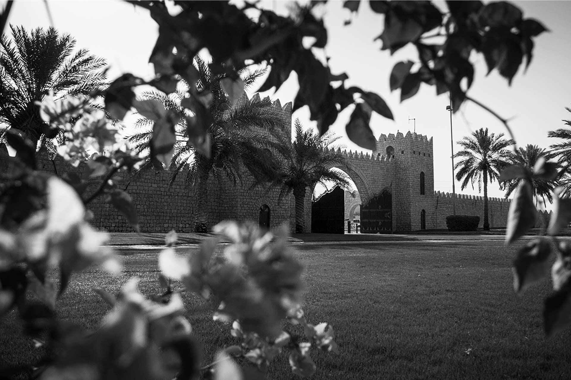 qatar-farm-al-shahania-stud6